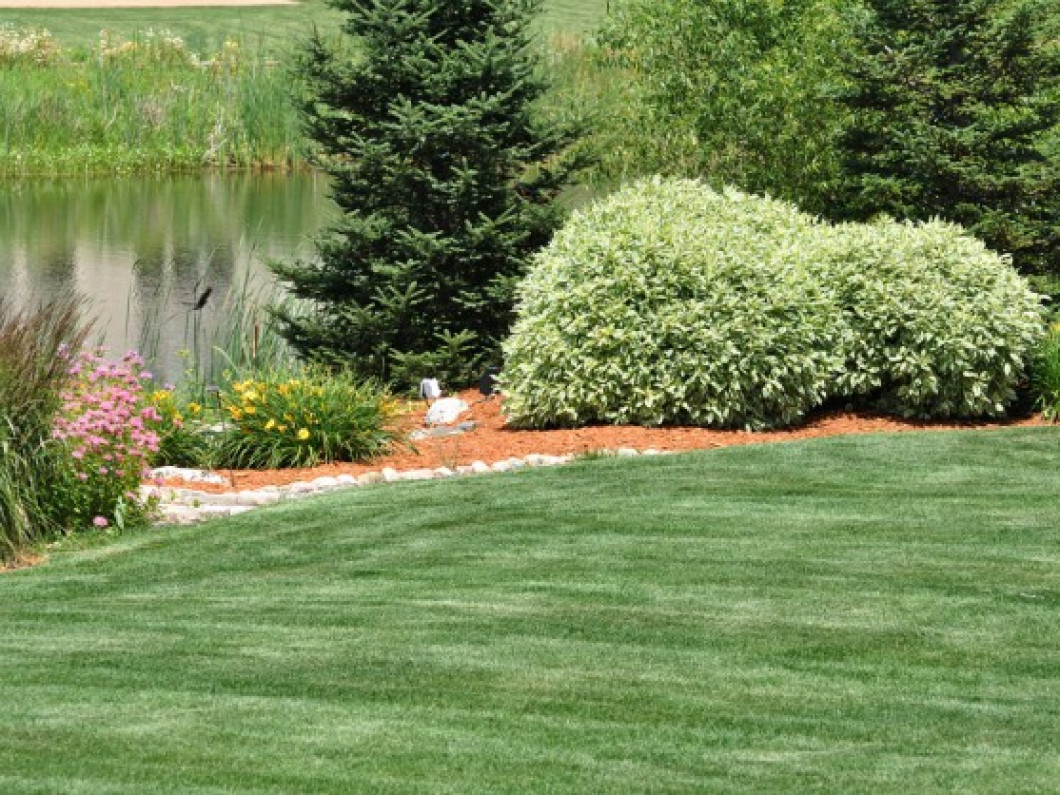 Irrigation Installation & Irrigation Repair Services in the Rock Hill, SC, harlotte NC area